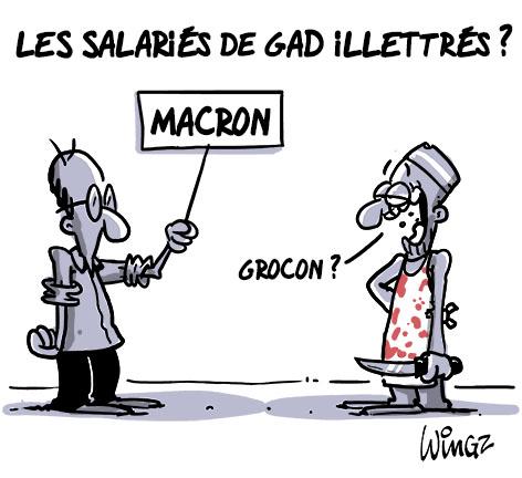 macron ministre grocon